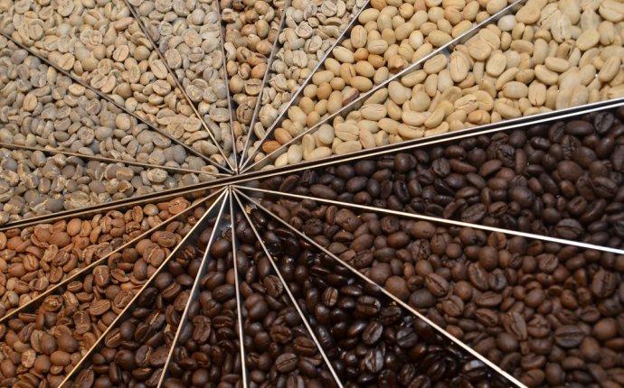 Arabica Coffee : Halflifetr.info