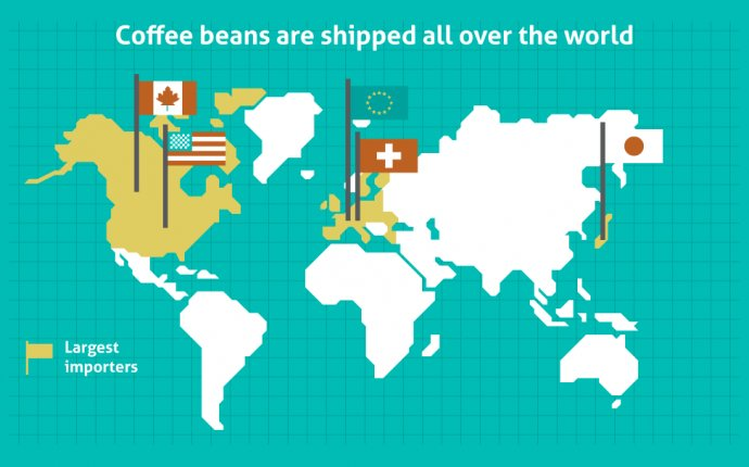 Where does coffee come from? A journey from bean to cup