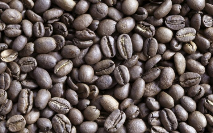 Weight of a coffee bean