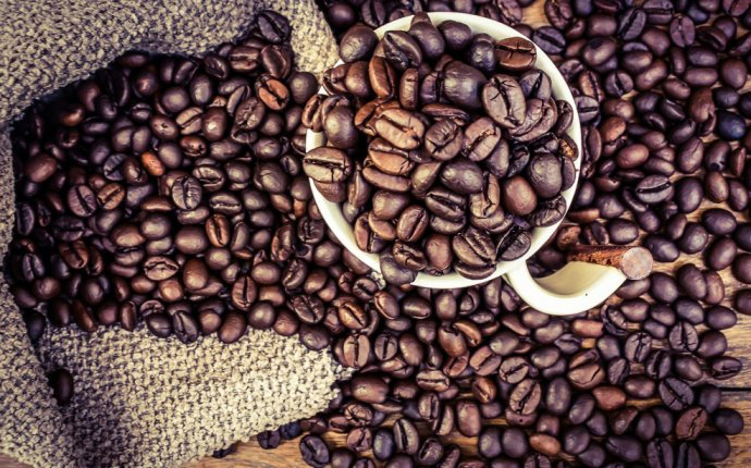 Are coffee beans seeds