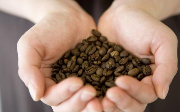 Are raw coffee beans edible